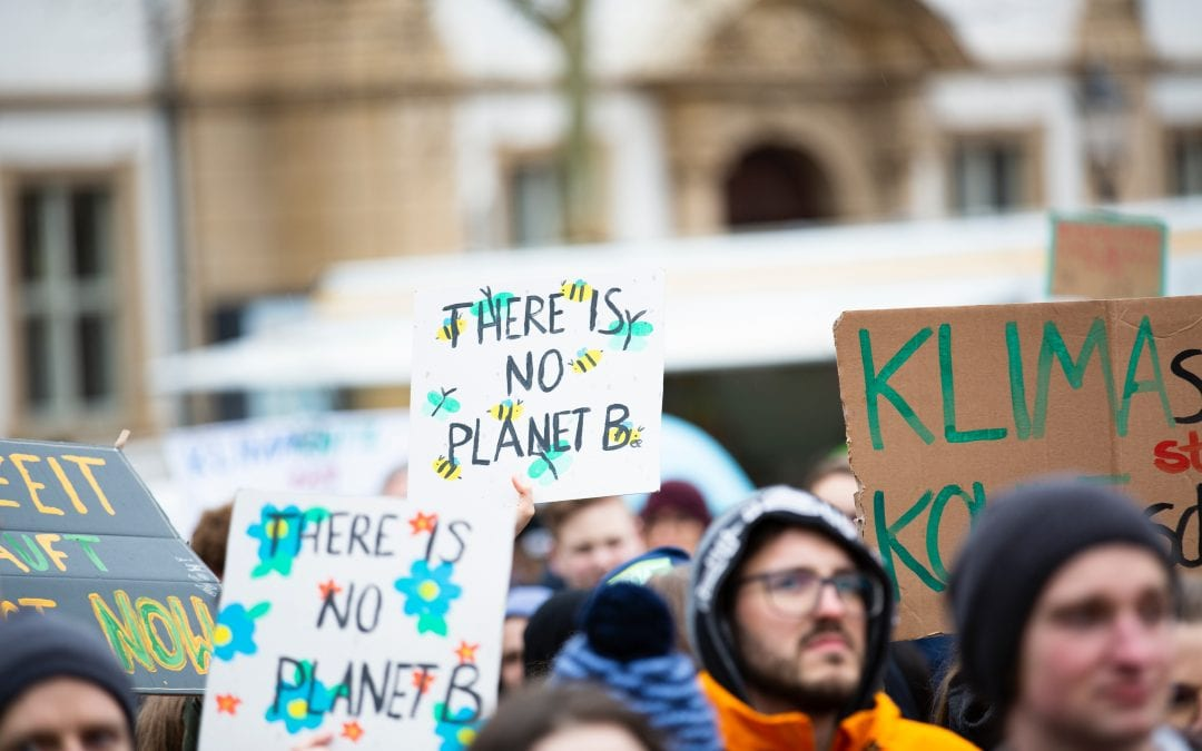 Fact Friday: Fridays For Future
